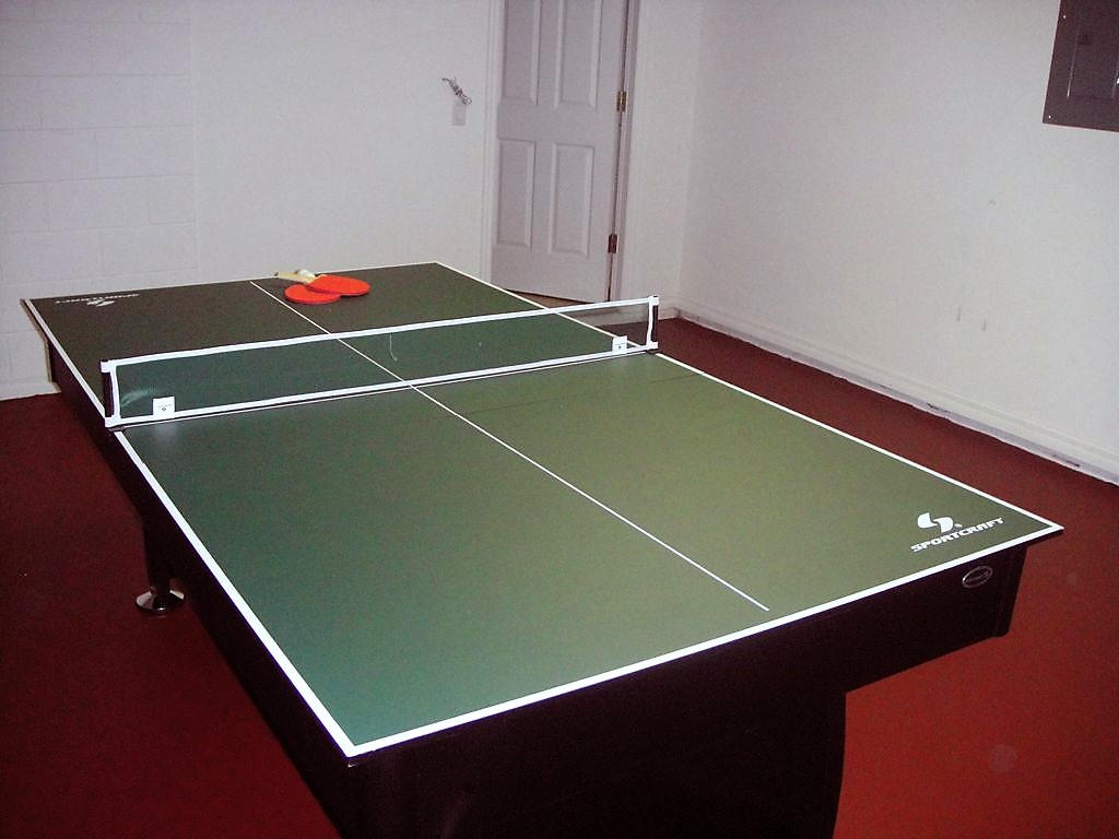 Game Room - Ping Pong Table.jpg