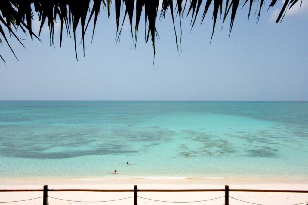 oceanview3.jpg