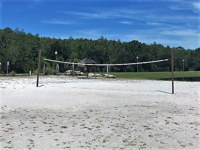 Volleyball Trafalgar.jpg