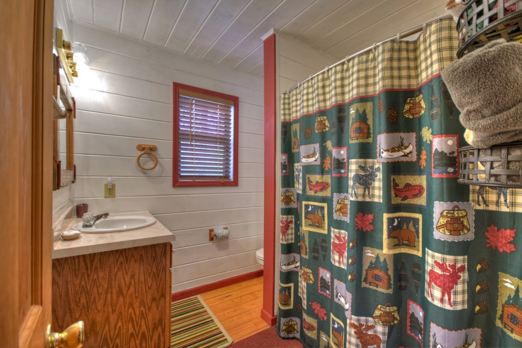 Walk-in shower, vanity and storage