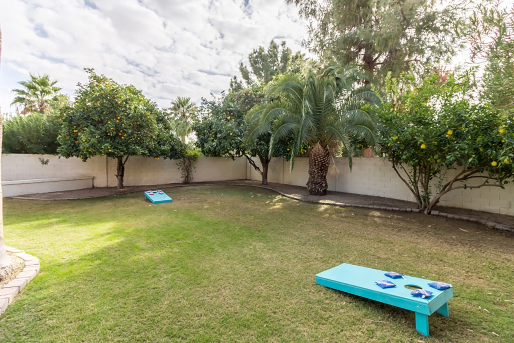 Large yard with yard games available