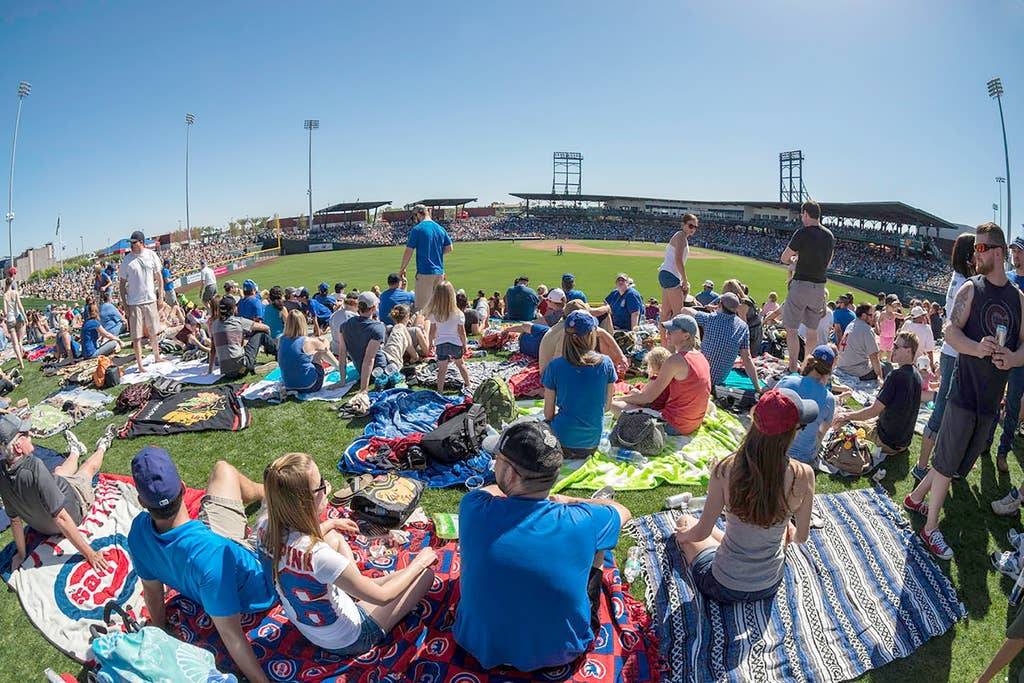 Spring Training Activities - minutes away