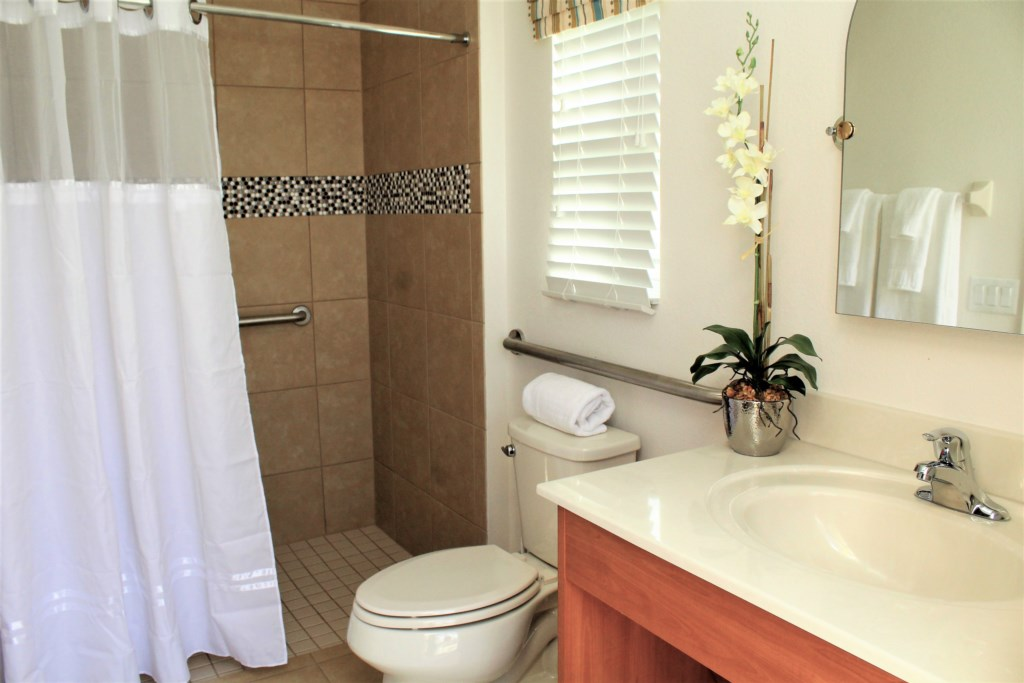 Master suite en-suite bathroom - walk in shower