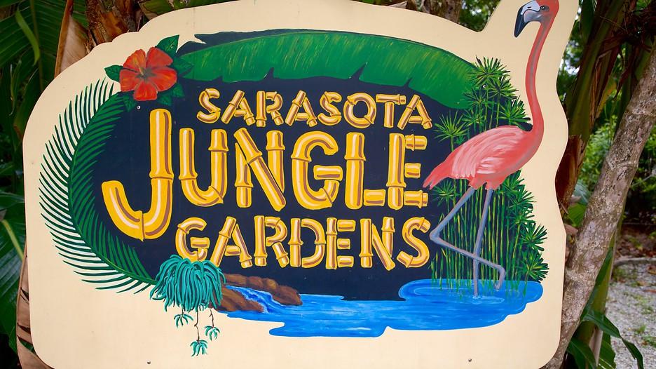 Sarasota Jungle Gardens
