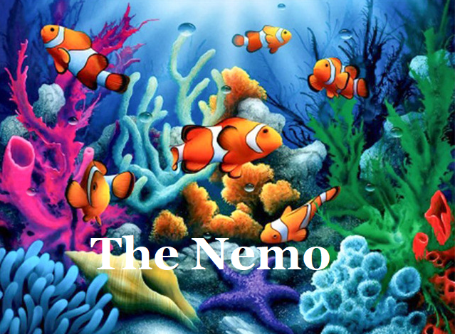 Welcome to the Nemo!