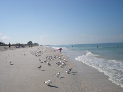 nokomis-beach-looking-south-to-Venice