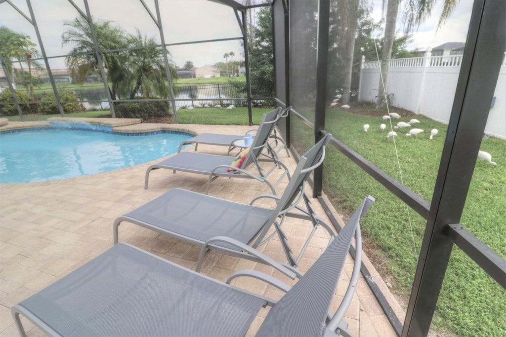 View 9 of gorgeous pool and spa with patio seating and loungers