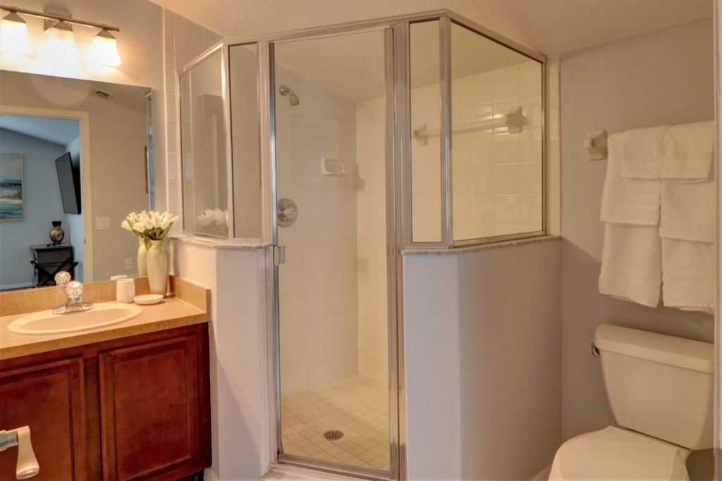 Wonderful single sink vanity with glass shower and toilet