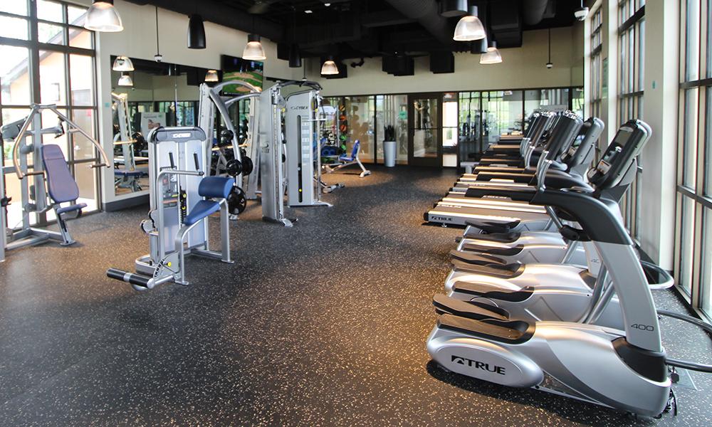18 Gymnasium.jpg