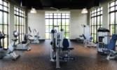 17 Gymnasium.jpg
