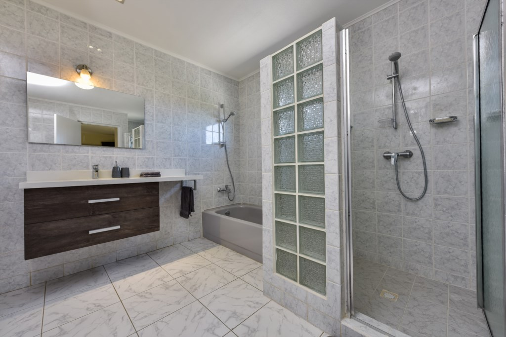 Master bathroom, with bathtub and walk-in shower