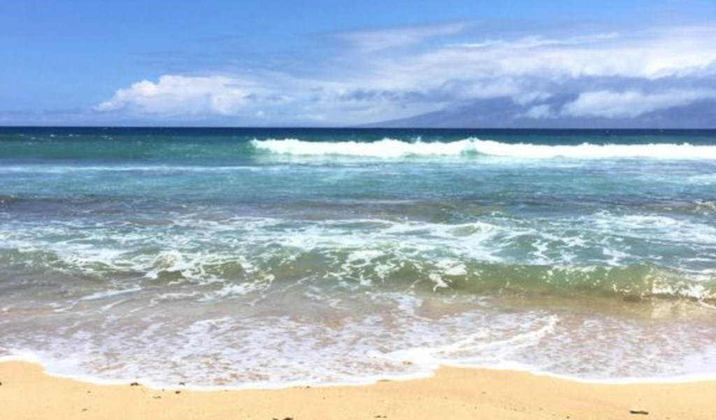 Take a stroll along the beach and enjoy the crashing waves.