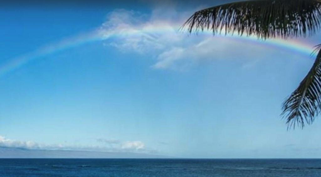 Enjoy the beauiful views at Napili Shores.