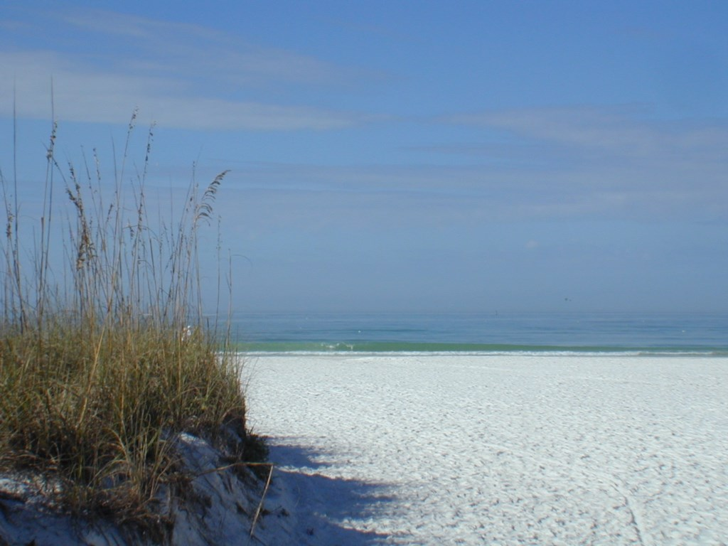 The natural beach of Anna Maria Island