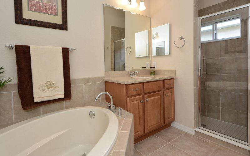 Tub, spacious walk-in shower, double sink and separate toilet