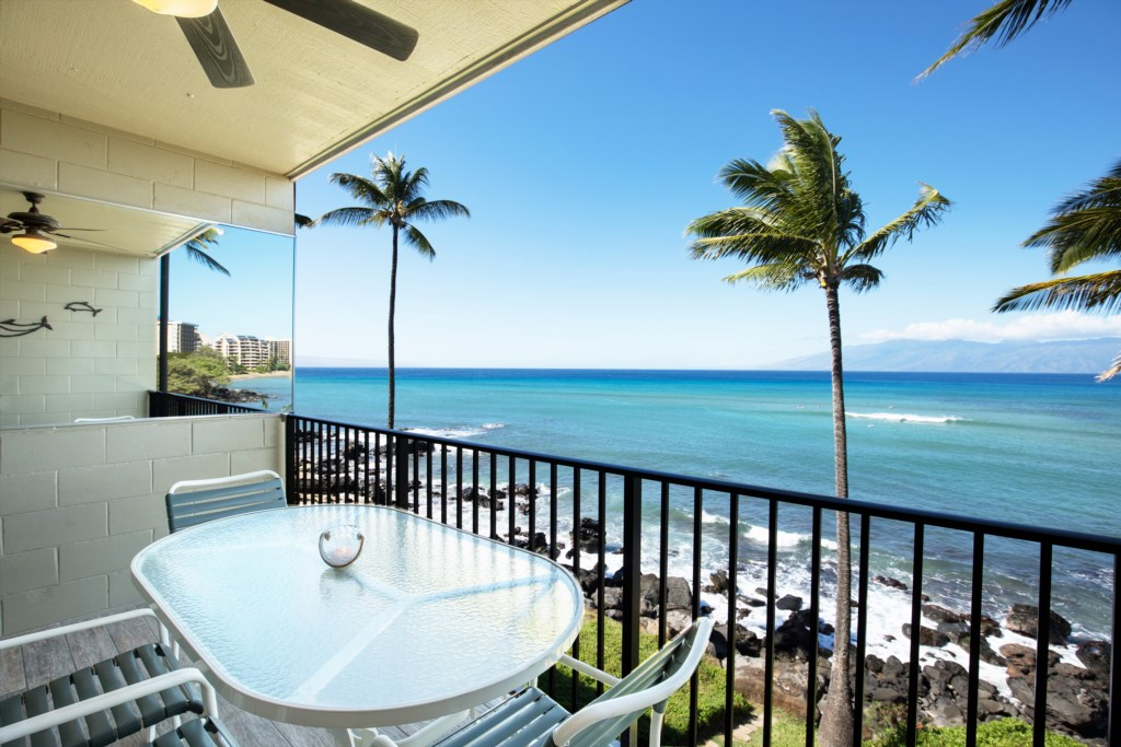 You can view Turtles and Whales from the comfort of your lanai.