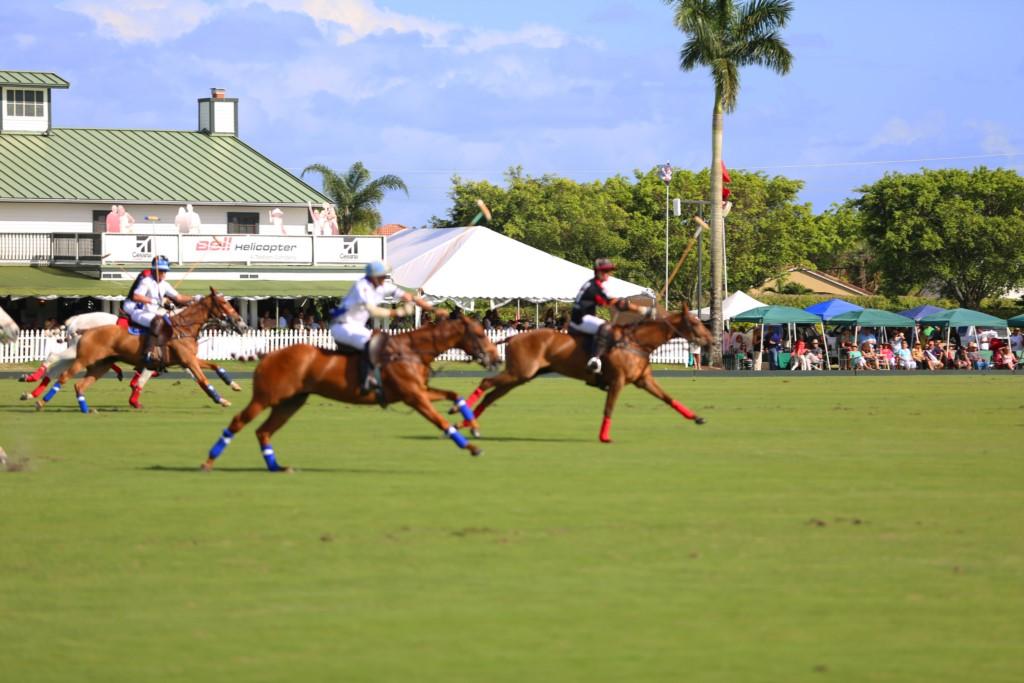 International Polo Club Palm Beach