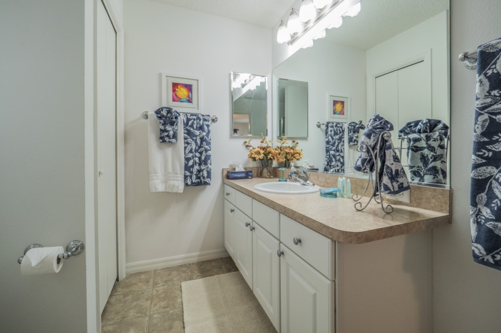 Master bathroom - ample counter space