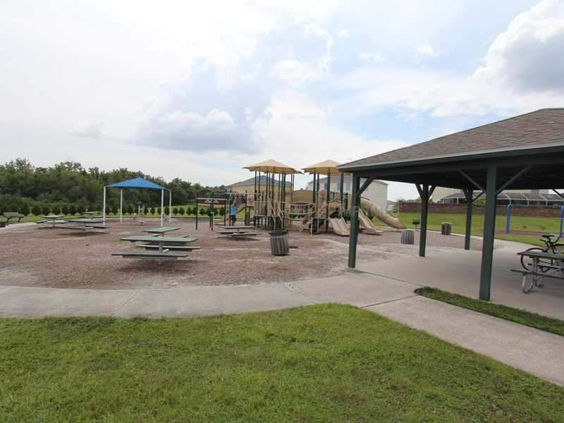 Playground with Swings and work out equipment