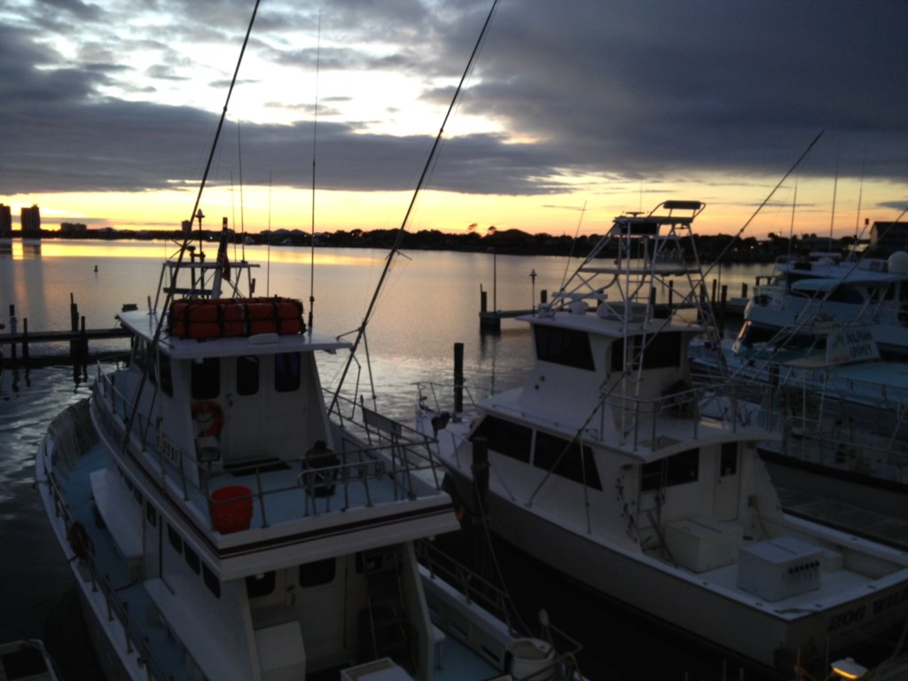 Plenty of fishing charters
