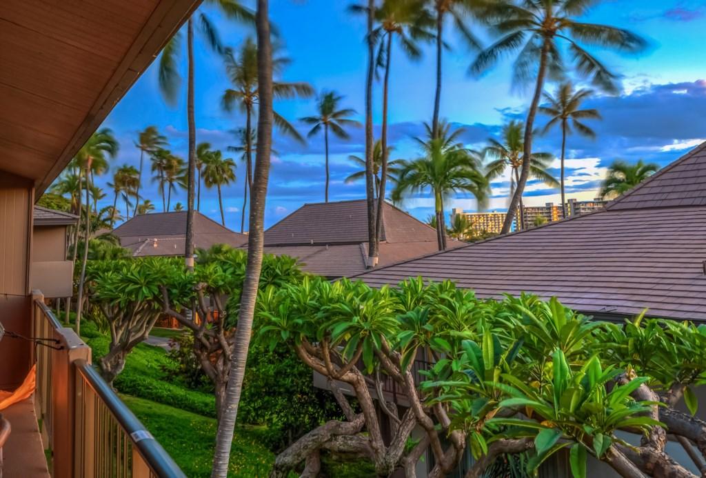 5c9eb7128c59b_Lanai Twilight Roofs .jpg