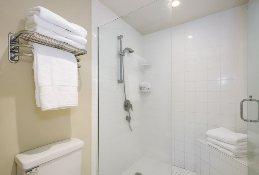 5c9eb724bf806_Second Bath Shower.jpg