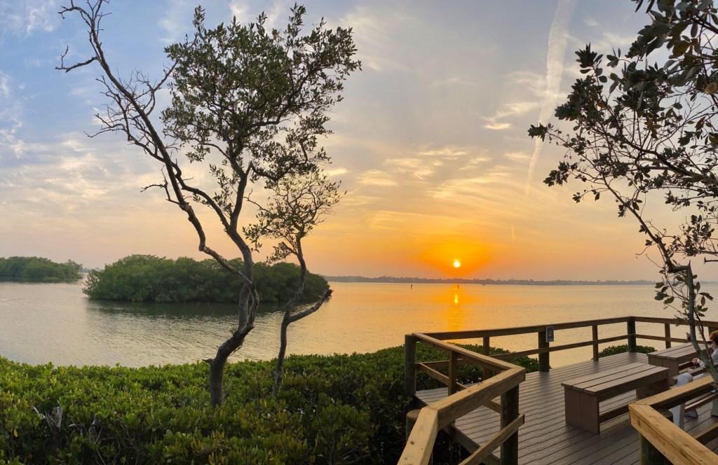 Pelican Cove Community Sunset Sarasota Bay Walk.jpg