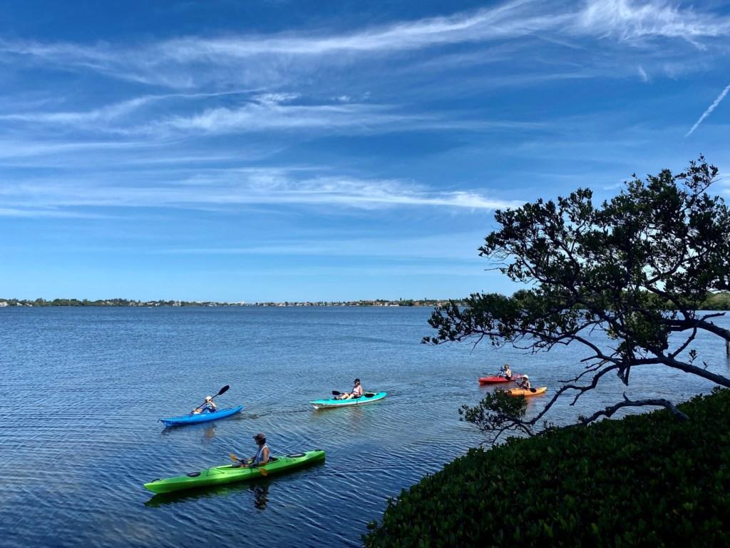 Harbor Kayaks Pelican Cove Kayakers Sarasota.jpg
