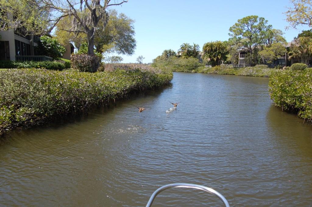 Pelican Cove Boat Canal Sarasota Florida.JPG