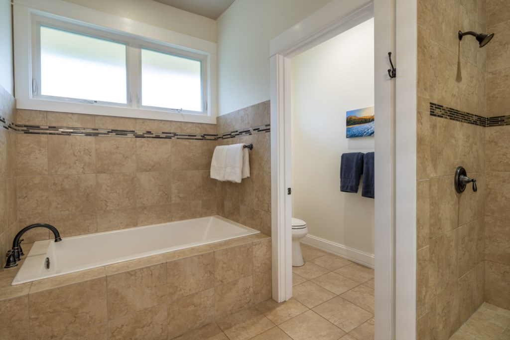 Large bathroom with walk-in shower with tub