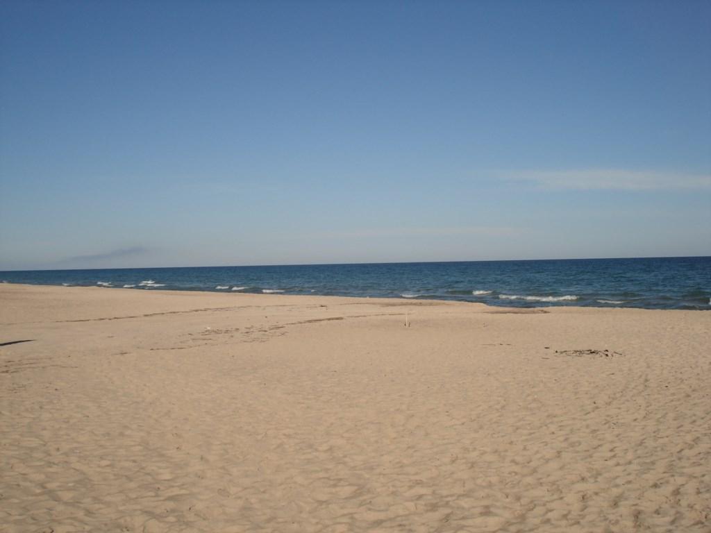 Berrien Street Beach