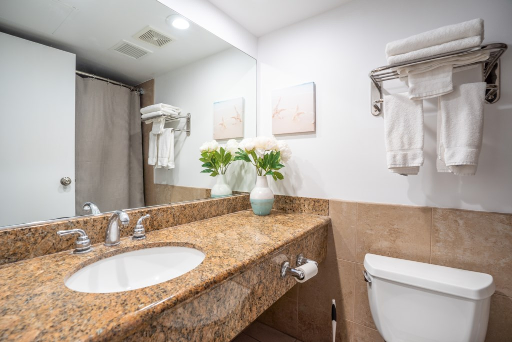 Bathroom sink with plenty of counter space