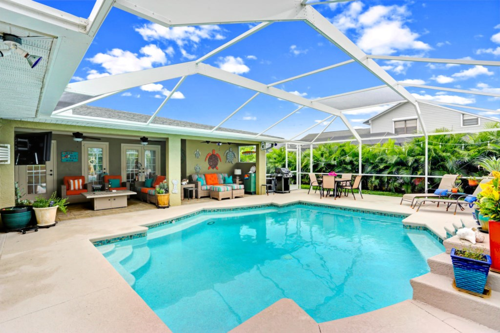 Areka Palms give a tropical and privacy feel