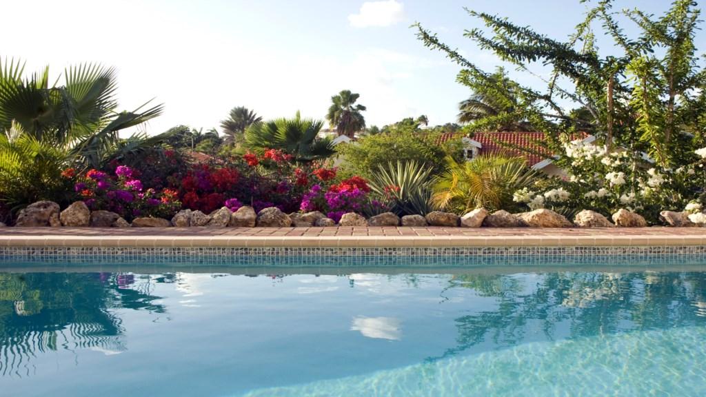 Zwembad met tuin 1920x1080.jpg