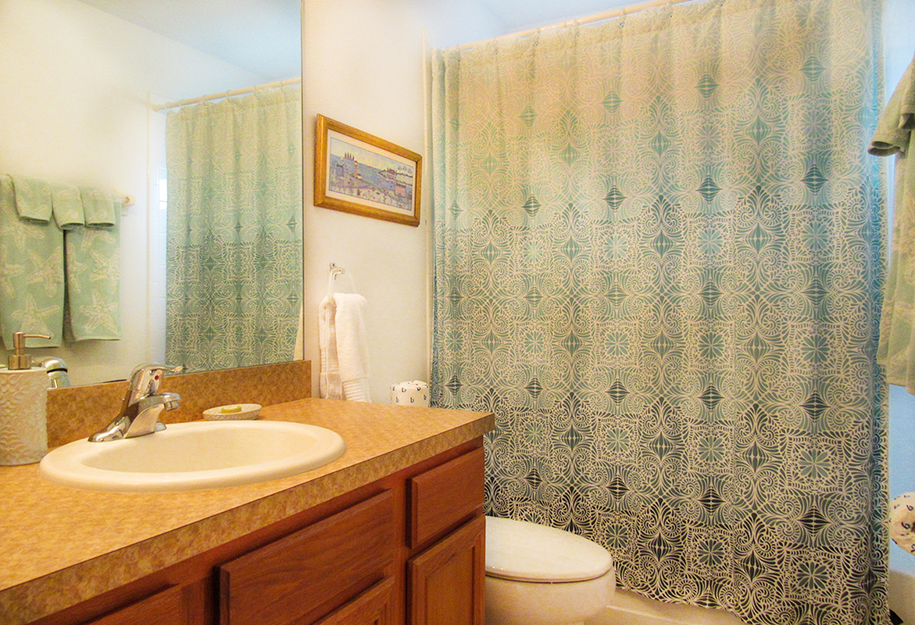Guest bathroom, conveniently accessible from both twin bedrooms.