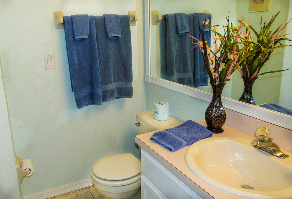 Guest bathroom, directly accessible from kid's bedroom.