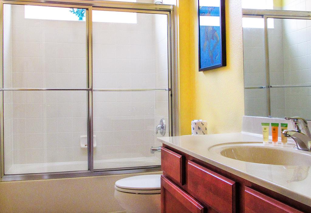 Downstairs Queen en-suite bathroom.