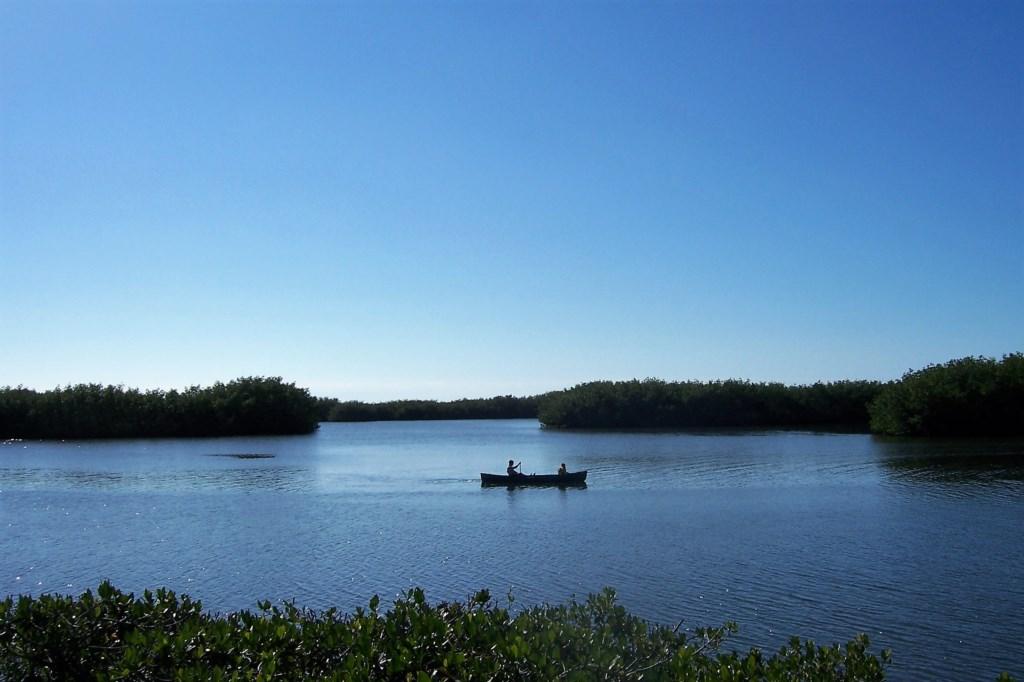 Pelican Cove Canoe Sarasota Bay.jpg