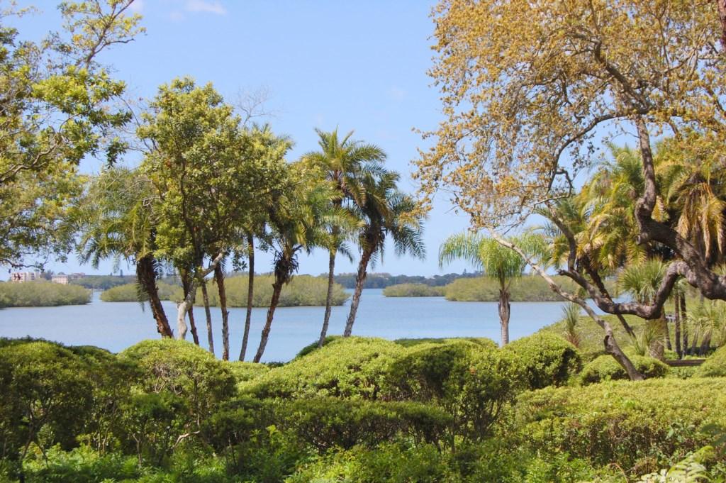 Pelican Cove Grounds.JPG