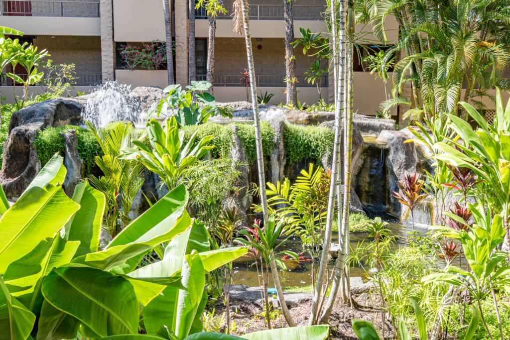 Koi Pond amidst lush tropical garden backdrop and waterfalls. You will be emersed in the real feelin