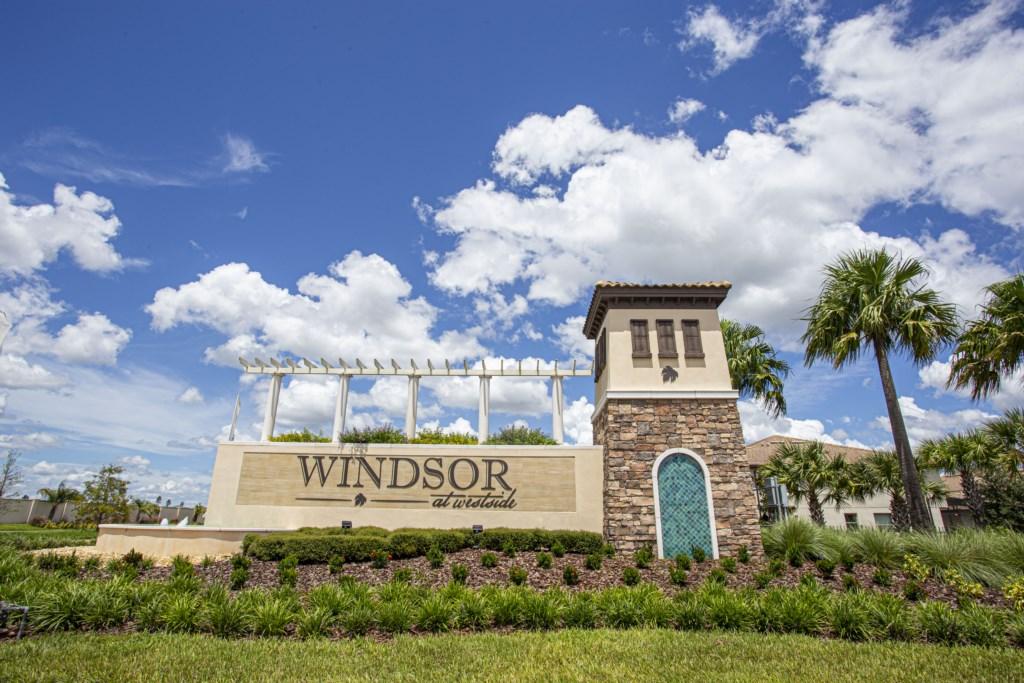 windsor-1.014