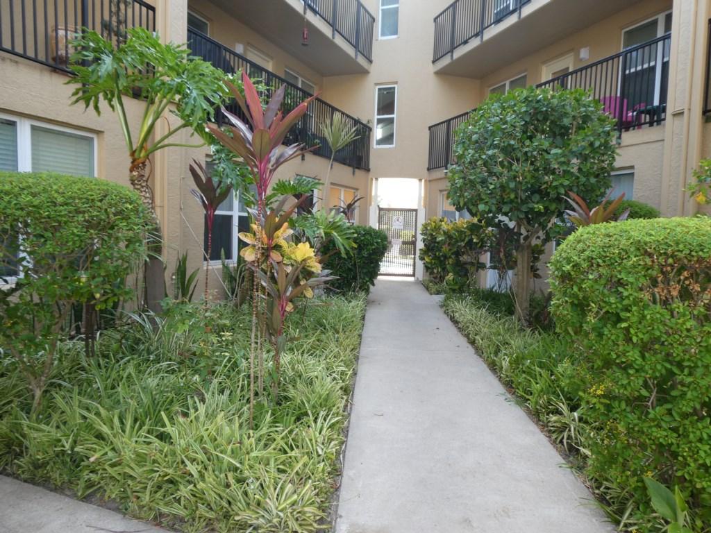 Courtyard walk way to pool
