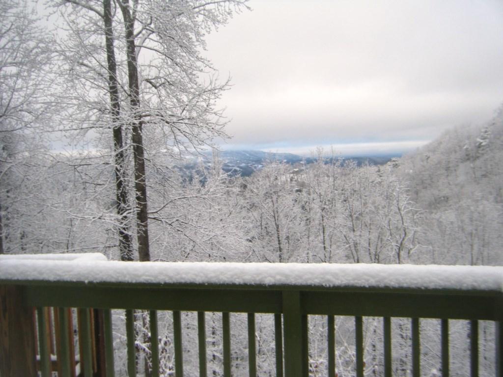 Snowy Mornings!