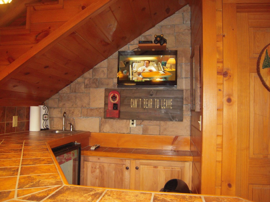 TV and Bar Area