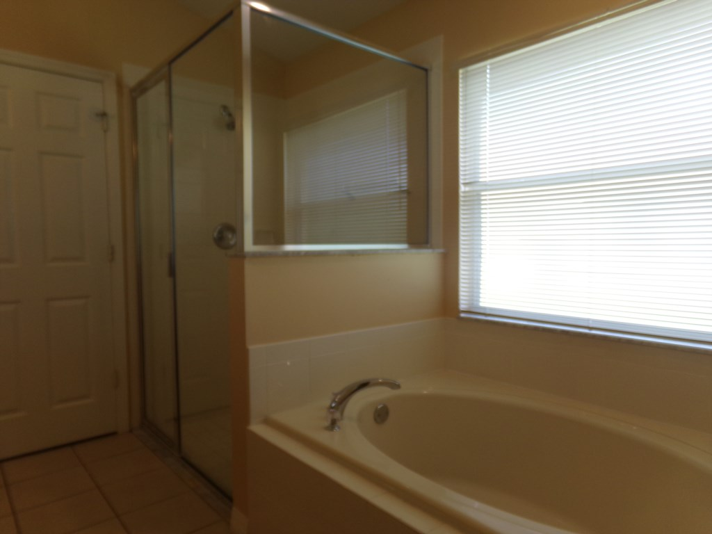 Sunken Tub & Large Walk In Shower