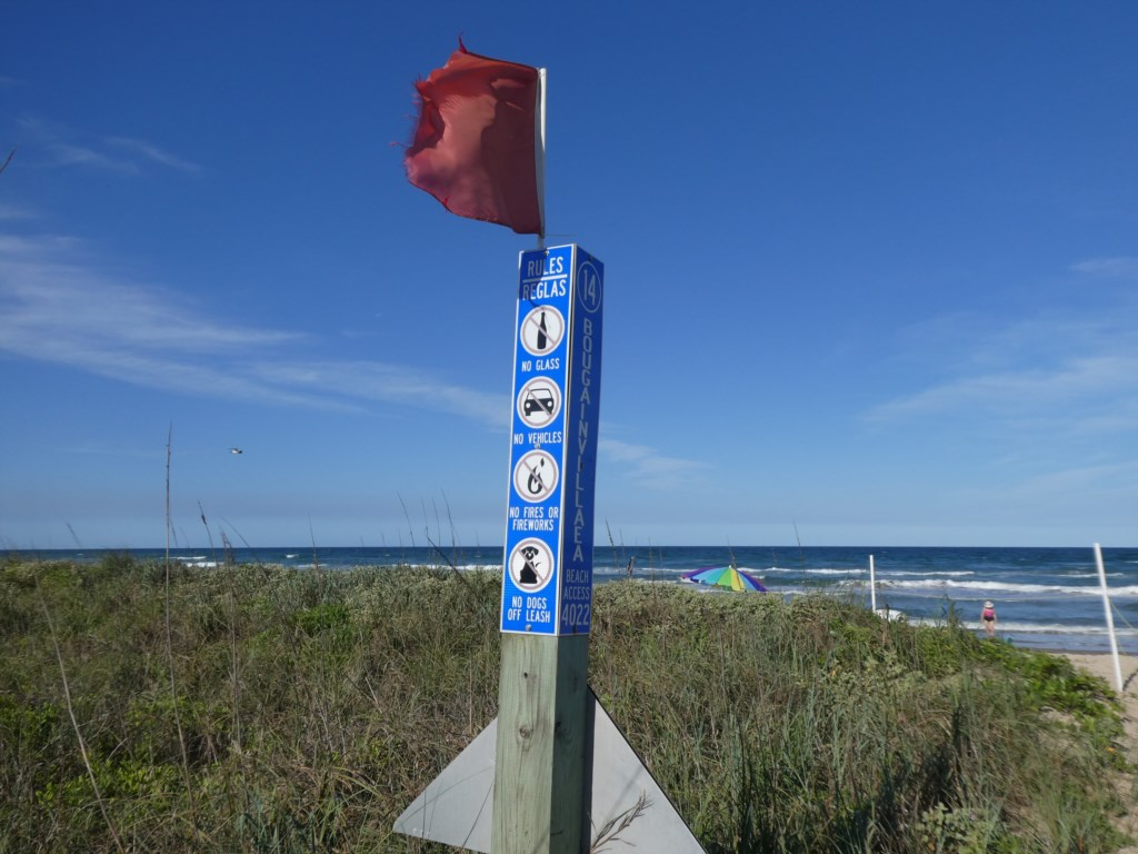Beach Conditions and Warnings