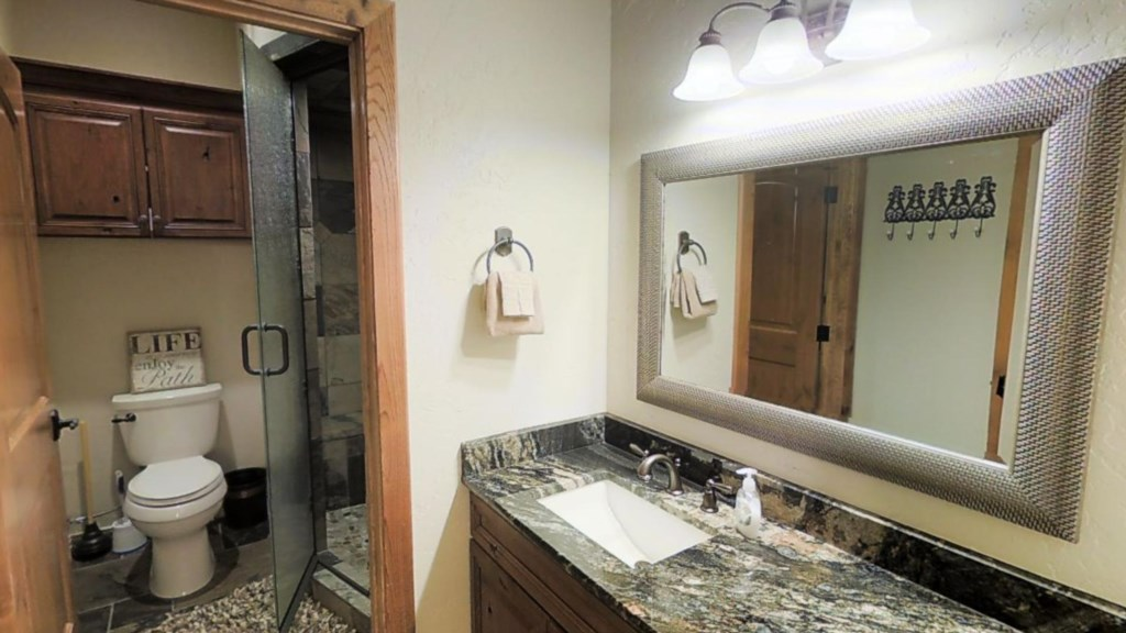 Walk in Shower and Granite Counters