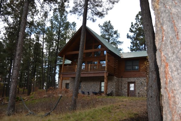 Maverick, Log home, heavily treed on 3ac views