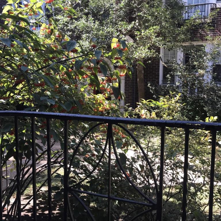 Juliet Balcony overlooks front gardens of Shaw Guest Suite.