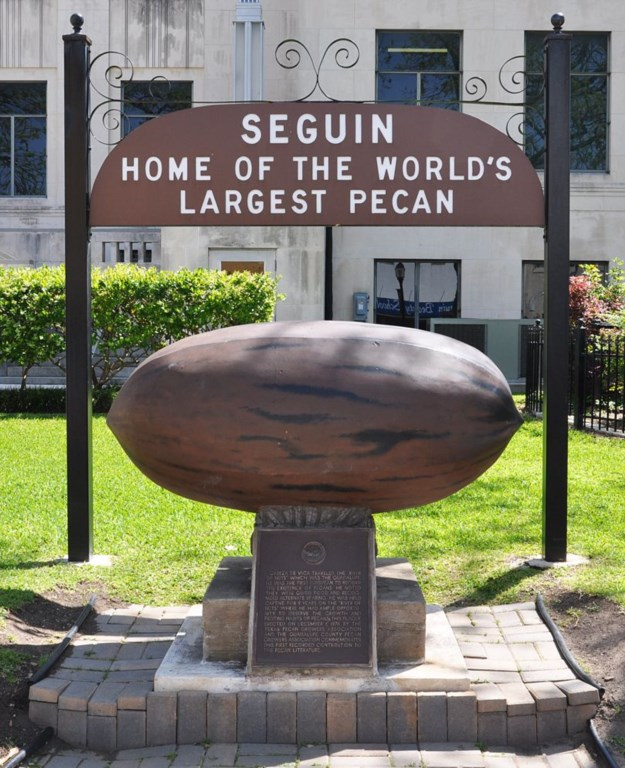 Seguin is home to the World's Largest Pecan!